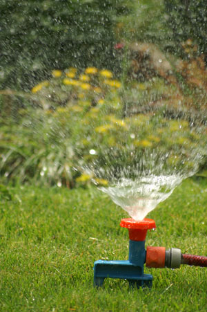 Water Irrigation Services